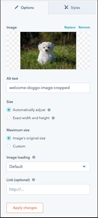 default-image-module-settings