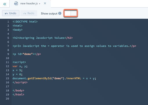 design-manager-javascript-show-output