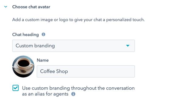 persist-custom-branding-chat-widget