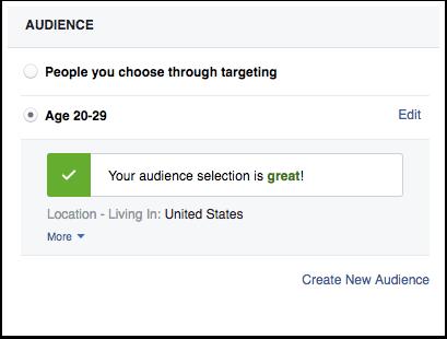 lead-ads-audience