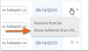 Show Advanced Adwords final url